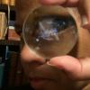 Aaron's Camponotus sexguttatus Journal - last post by futurebird